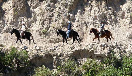 Adventure Horse Tour In The Colca Canyon