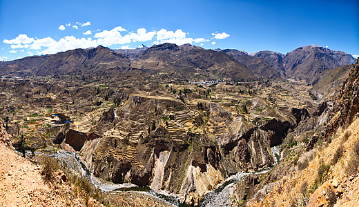 Agriculture Terraces In The Colca Valley
