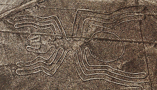 Spider Figure On The Surface Of The Nasca Lines