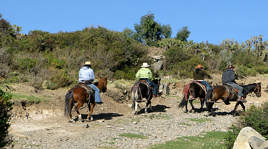 Colca Horse Riding Tour